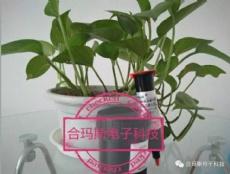 亚洲胶粘剂现状及未来